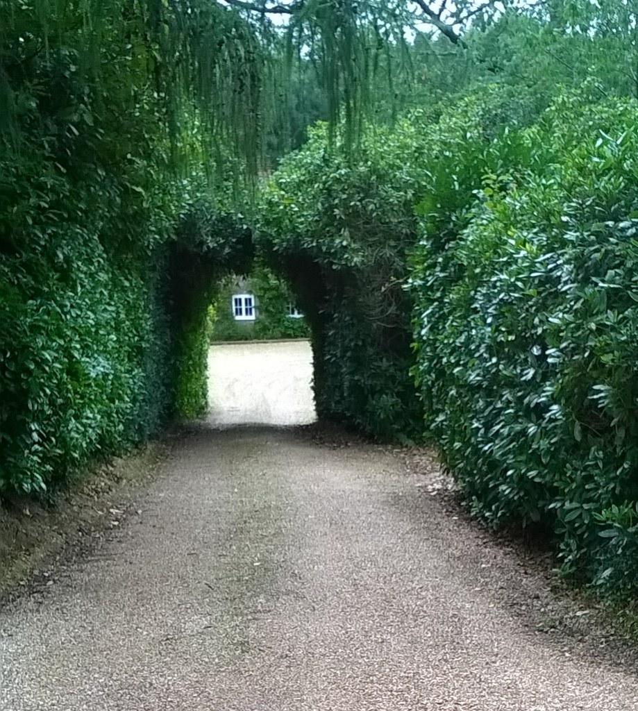 Hedged entrance