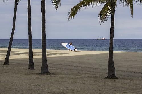 summer beach surf florida surfing fortlauderdale