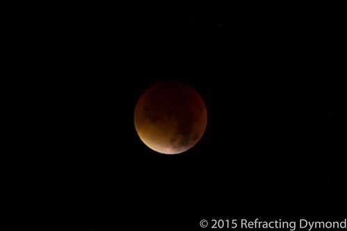 Blood Moon | by refractingdymond