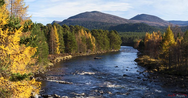 Autumn on the Dee