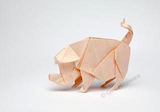 Pig by Gen Hagiwara | by N. Terry