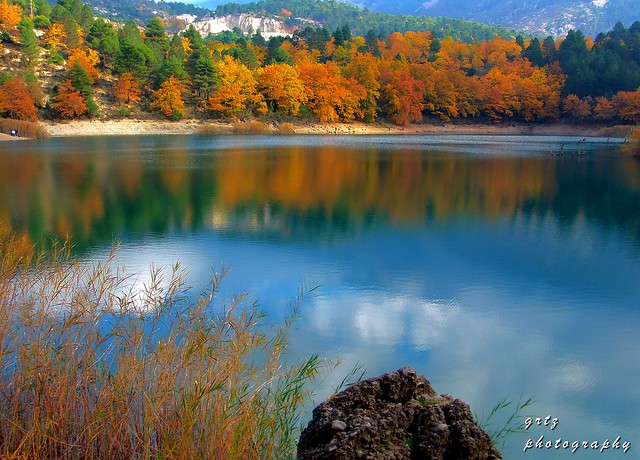 autumn colour palette...