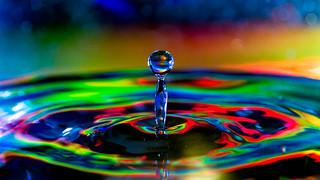 Rainbow Spittoon. 348-365.