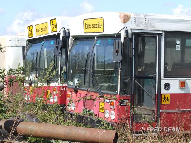 Bus Eireann KS50 & 177.