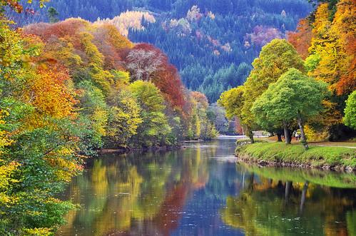 ericrobbniven scotland landscape trees dunkeld perthshire rivertay autumn