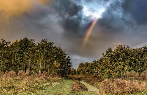 clouds hss landscape rainbow sliderssunday trees nederlandvandaag
