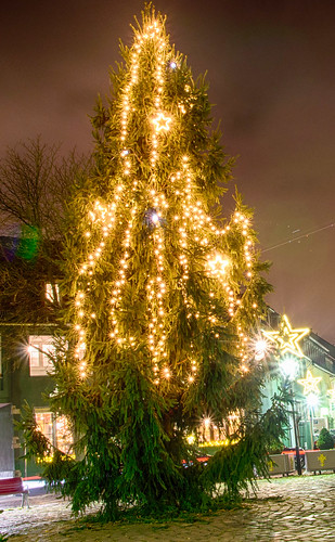 Weihnachtsbaum Marktplatz