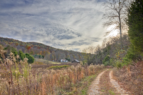 Road, Dog Cove State Natural Area, White County, Tennessee | by Chuck Sutherland