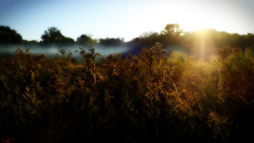 sunset landscape glow fuji orton