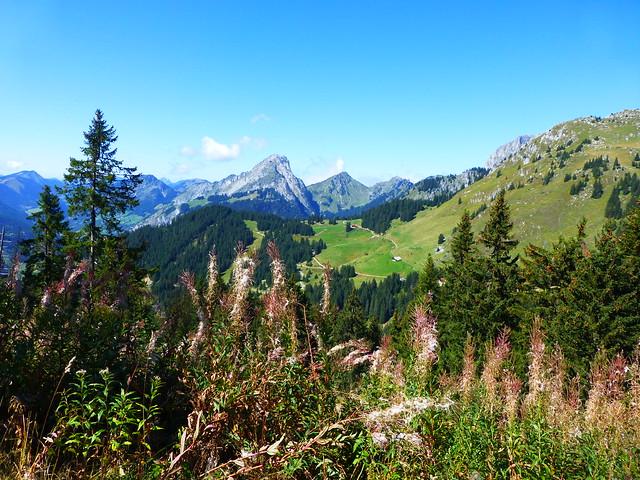 09.07.15.Le Mont Chauffé
