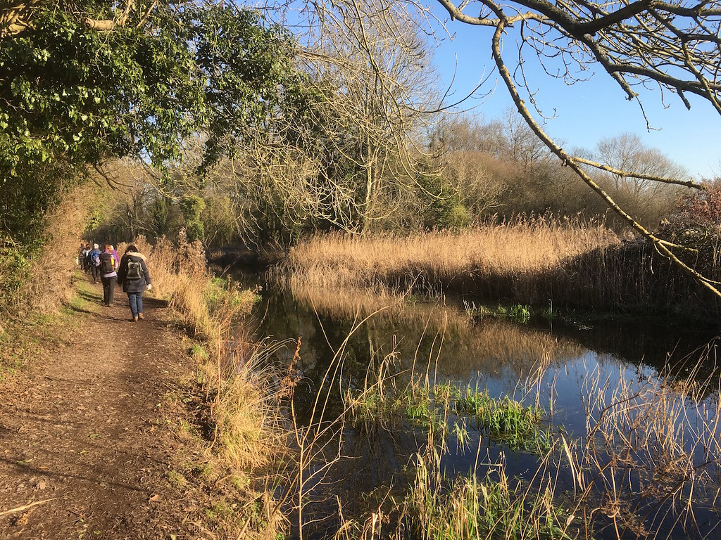 The Basingstoke Canal Hook to Winchfield walk
