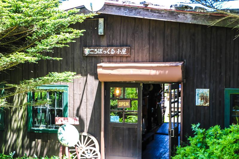 2014-07-26_00263_霧ヶ峰.jpg