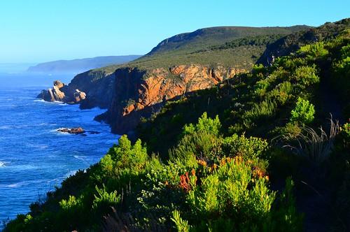 escarpment morning 5 otter trail | by Travpacker.com