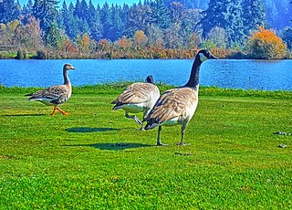Hanging out on the tee box