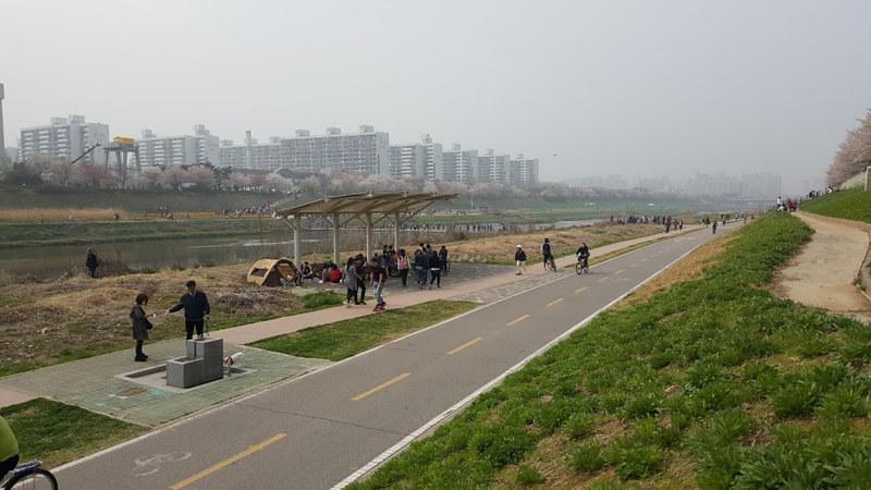 Nguyen, Anna; South Korea - Episode 12 (15)