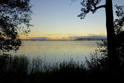 morning sky lake tree water sunrise landscape outdoor serene waterscape