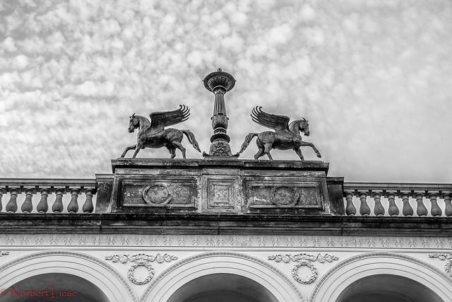 Pegasus-Statuen Belvedere Pfingstberg Potsdam