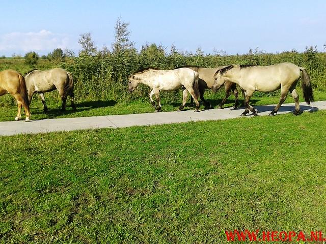 2015-10-09 Test wandeling 26 Km Oostvaarders  (15)