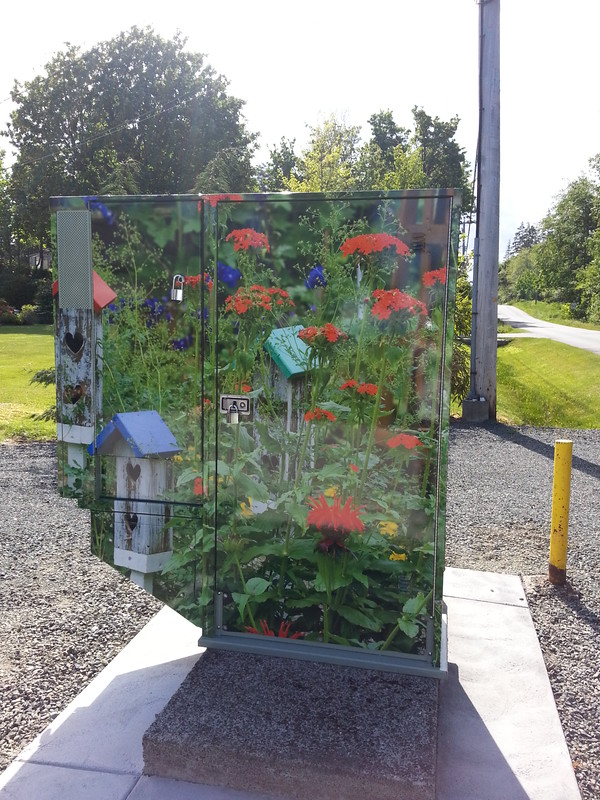 Telus Campbell River utility box wrap