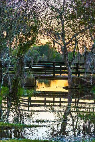 texas wallercounty fieldstore josephroad springcreek trees creek country stream sunset silhouttes water bridge tributary wyojones np