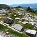 Středověký hřbitov, kterému se říká Greblje in Provič, foto: Petr Nejedlý