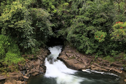 travel usa nature water canon landscape hawaii waterfall paradise view scenic falls foliage nd tropical hilo thebigisland 2015 5dmkiii photosbymch