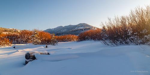 travel winter vacation usa sunlight white snow nature beautiful america sunrise canon landscape freedom us rocks unitedstates wildlife nevada north sunny northamerica reno exploration wish500px