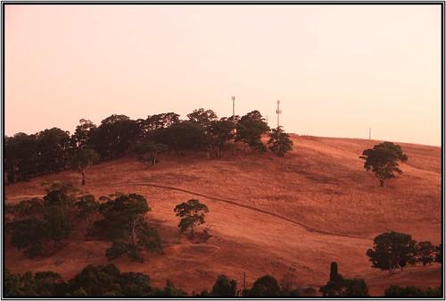 trees sky silhouette australia southaustralia nairne cloudsstormssusetssunrises colourshills