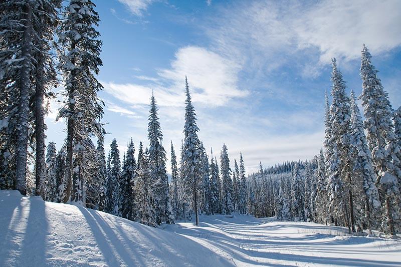 Sun Peaks Ski Resort, Kamloops, Thompson Okanagan BC, British Columbia