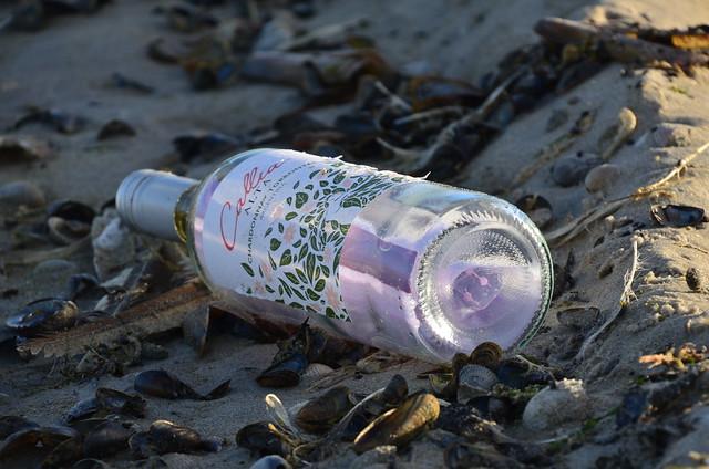 Vlieland - strand - flessenpost