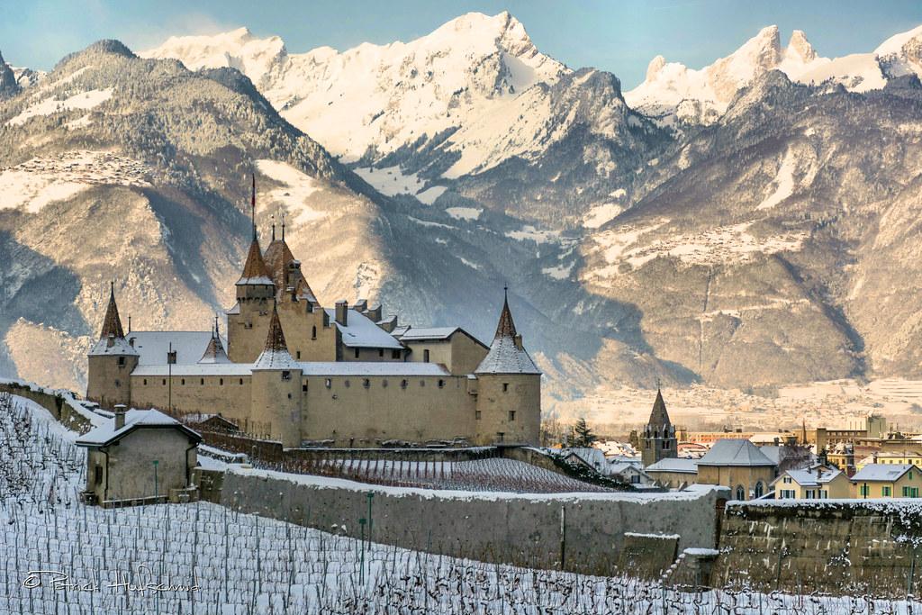 hot sale online 0ddf3 e7880 Château d'Aigle! | Website: hufschmidguitars.com Plectrums ...