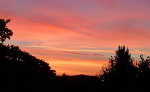 sunset sky skyscape motcombe dorset trees landscape