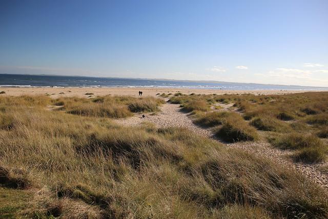 The beach at Dornoch