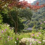07 Corea del Sur, Haeinsa 52