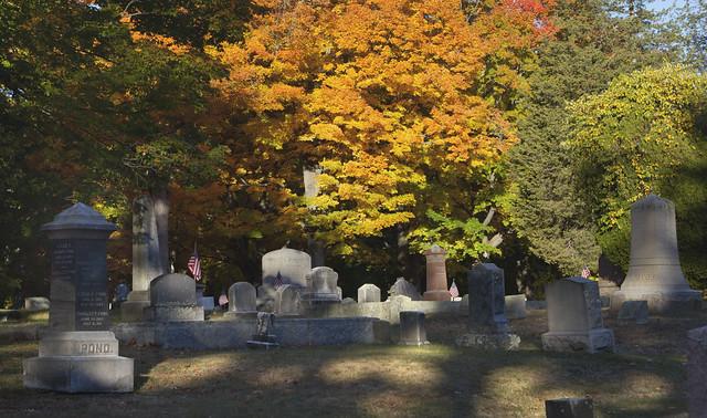 Foliage at Lakeside Cemetery; Wakefield, MA (2015)