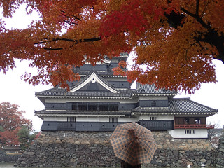 Matsumoto Castle with Koyo Red Autumn Leaves Maple Tree viewed by Man with Umbrella in foreground | by neeravbhatt