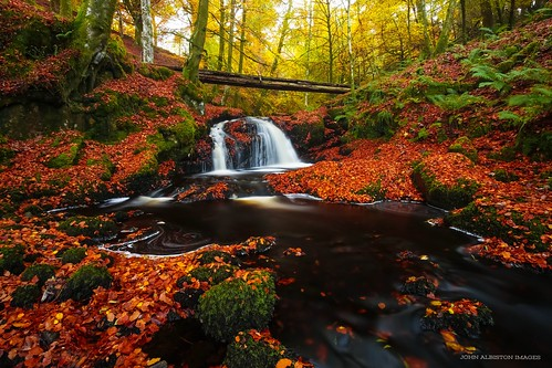 touch glen burn campsies campsie fells autumn beech leaves waterfall scotland scottish