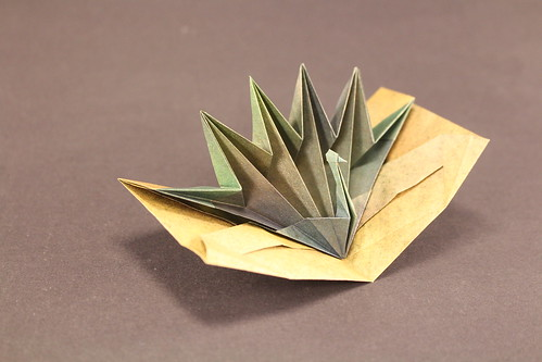Peacock Pop-Up Card designed by Jeremy Shafer, folded by me.   by origami_8