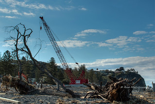 IMG_0779x2faux HDR Crane framed by flood debris | by roseyposey2009