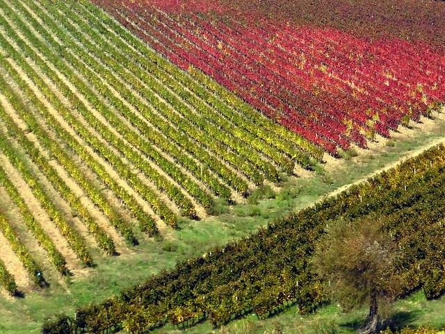 United Colors of Tuscany