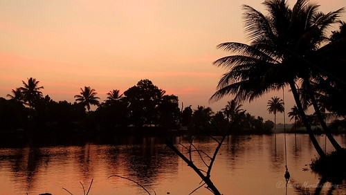 sunset india reflection reflections kerala backwaters madhu kuttanad madhumuraleedharan