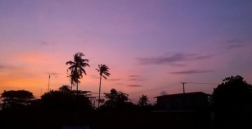 sunset silhouette palms nokia twilight lagos powerlines sunsetcolors lumia530