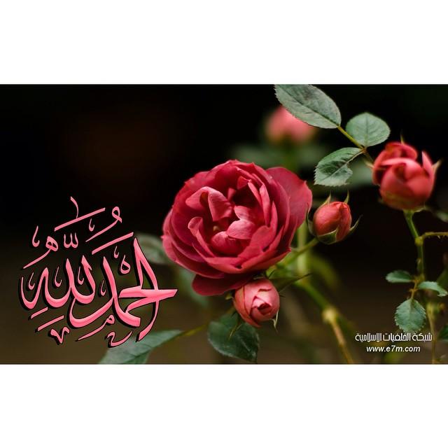 تشرفنا متابعتكم خلفيات اسلامية رائعة مسلم ادعيه قران ا Flickr