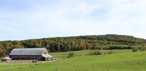 autumn canada fall automne quebec farm québec qc ferme grange bran estrie easterntownships ironhill