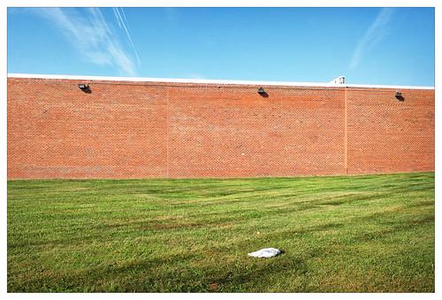 brick wall minimal