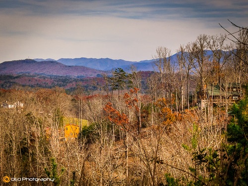 trees mountains nature landscape lumix outdoor northcarolina panasonic blueridgemountains murphy appalachianmountains fz200