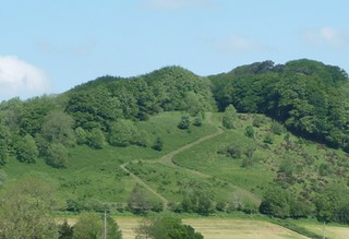 View_of_Lewesdon_Hill