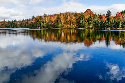 autumn red canada leaves yellow quebec sainteannedeslacs lacsaintamour