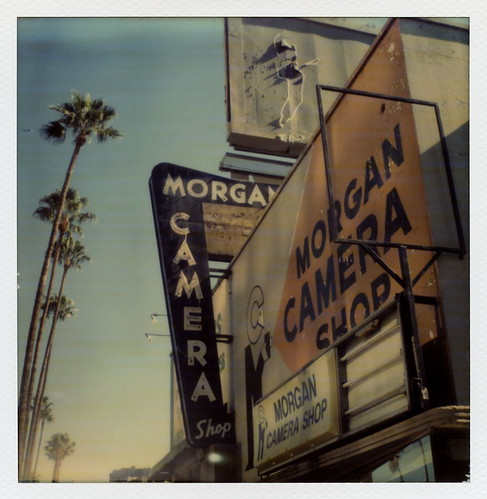 california ca camera trees sunset toby 2 test color tree abandoned film sign shop project polaroid sx70 photography for graffiti la los closed neon boulevard angeles palm billboard tip cameras hollywood type instant 20 morgan hancock gen pioneer generation tigerstripes blvd impossible the gen2 0515 impossaroid