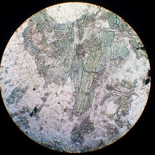 Tourmaline (30 µm thin section, PPL) | Turmalín (30 µm ...